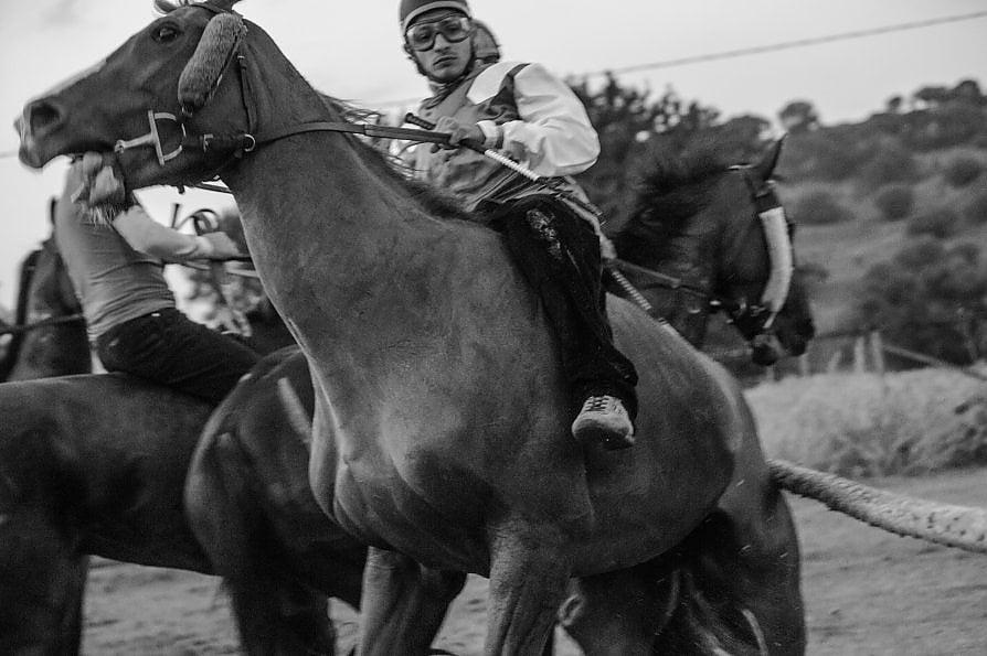 Cavalli e sudore, così nel Palio batte il cuore del popolo sardo