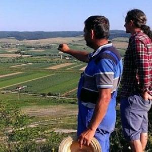 Romania, terreni agricoli e affarismo sregolato: il business delle campagne continua