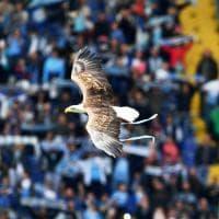 Lazio-Palermo, il film della partita