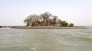 A rischio isola di Kunta Kinte