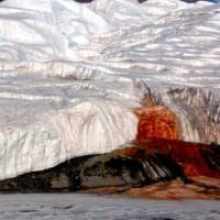 """Antartide: """"Cascate di sangue"""", risolto il mistero"""