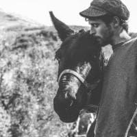 L'impresa slow di Francesco: da Palermo a Torino a dorso del mulo Ernesto