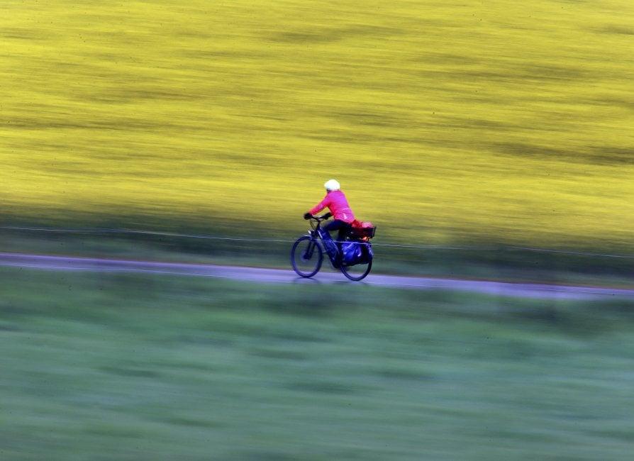 Bici: dalla mobilità al bike sharing. I dati in Italia