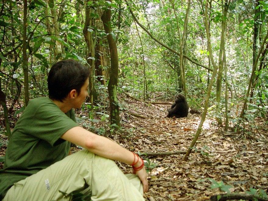 Chloé Cipolletta, sulle orme del gorilla di montagna