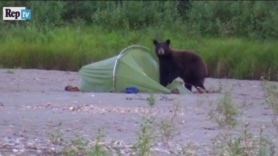 """Tre mesi in Alaska. Così Elliott ha ricreato """"Into the Wild"""""""