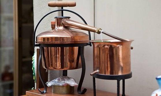 Milano, il gin nasce in lavastoviglie: quattro giovani imprenditori e la distilleria creativa