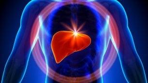 Tumore del fegato,   aumenta la sopravvivenza grazie all'immunoterapia