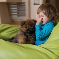 Perseguitati dalle allergie anche in casa. Cosa si nasconde in cucina o nel divano