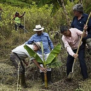 Colombia, parte il piano per sostituire le piantagioni di coca con prodotti legali