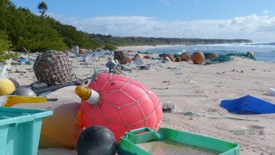 Pacifico, 38 milioni pezzi di plastica: così l'isola incontaminata è diventata la più inquinata del mondo