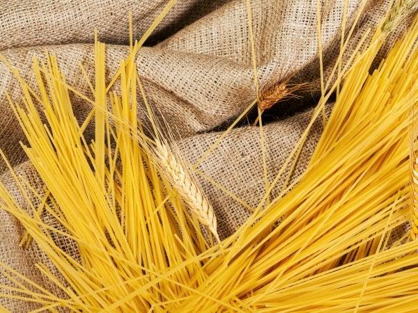 Grano duro, previsto un calo di semine e produzione