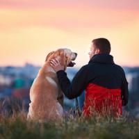 Il tuo cane sa parlati: basta saperlo ascoltare per riconoscere le sue emozioni