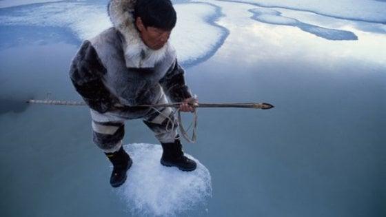 """Il riscatto dei giovani Inuit: """"Gli animalisti ci hanno rovinato, cacciare è nella nostra cultura"""""""