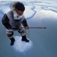 """Il riscatto dei giovani Inuit: """"Gli animalisti ci hanno rovinato, cacciare è nella nostra..."""