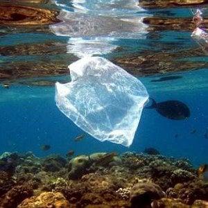 La grande minaccia per la salute del mare si chiama plastica