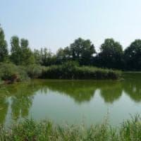 Wwf: domenica aperte le 100 oasi e 130 riserve naturali