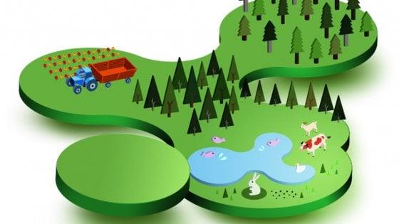 Il parco delle meraviglie (e delle biodiversità)