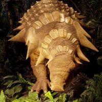 Signori, ecco il nodosauro