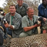 ''The Big Game Safari'': il business di Theunis Botha, cacciatore ucciso da un elefante