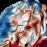 """""""Il cervello? È super flessibile"""". Ecco come cambia quando impariamo a leggere da adulti"""