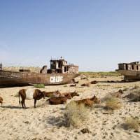 Moynaq, la città di porto che ha dimenticato il lago