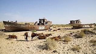 Nel deserto dell'Aral: dove il lago è solo un ricordo