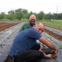 Sulle colline di Torino, la cooperativa solidale rende più buone le ciliegie (e non solo)