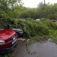 Russia, uragano si abbatte su Mosca: 11 morti e decine di feriti
