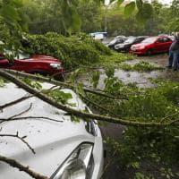 Mosca, uragano su Mosca: morti e feriti per gli alberi sradicati