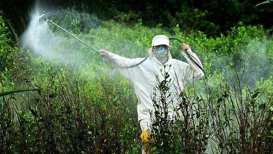"""Glifosato, lettera aperta alla Commissione europea: """"Servono nuove indagini sul pesticida"""""""