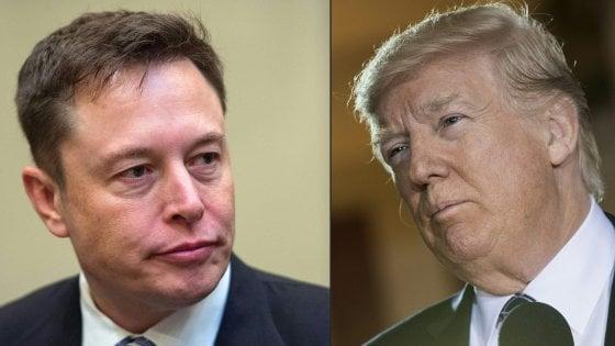 Usa, Silicon Valley contro Trump: Cook e Musk paladini del clima