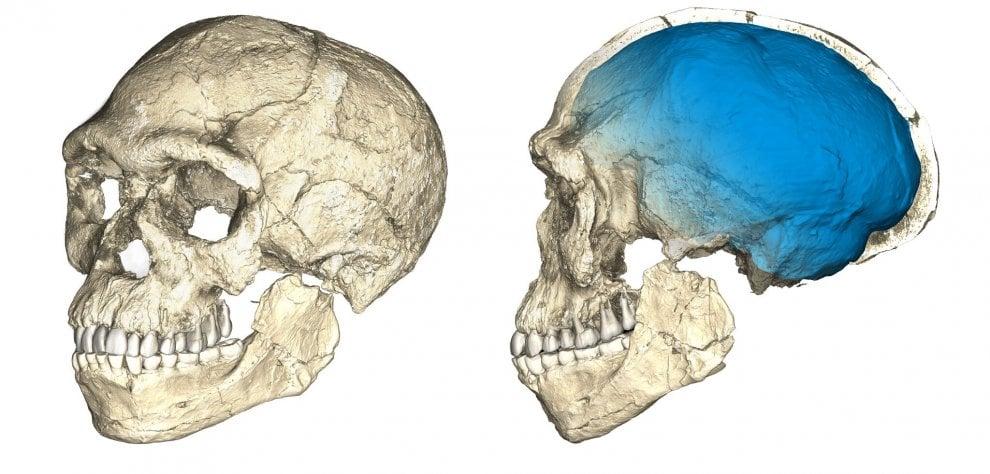 Ecco i resti dei nostri antenati