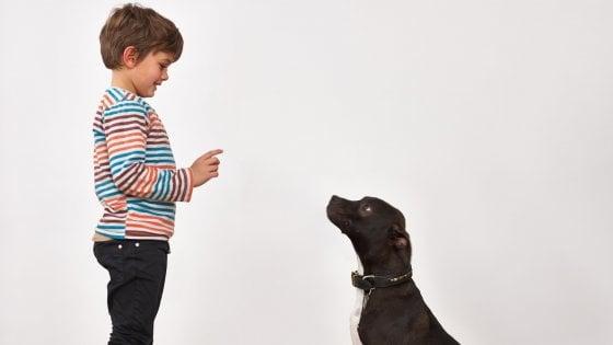 """""""Caro padrone sei proprio ingiusto"""". Così i cani riconoscono i torti subiti"""