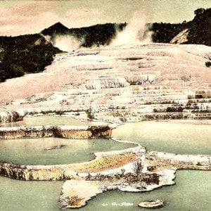 """In Nuova Zelanda ritrovata l'ottava meraviglia scomparsa: """"Le piscine rosa sono qui"""""""