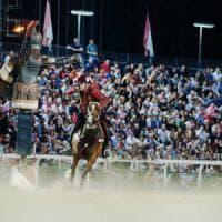 Quintana di Foligno, cavallo muore dopo caduta in gara