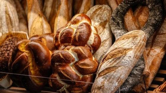 """""""Non è detto che il pane integrale sia più salutare"""""""