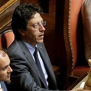 """Ius soli, Buccarella (M5s): """"Parola agli iscritti se cambia la legge"""""""