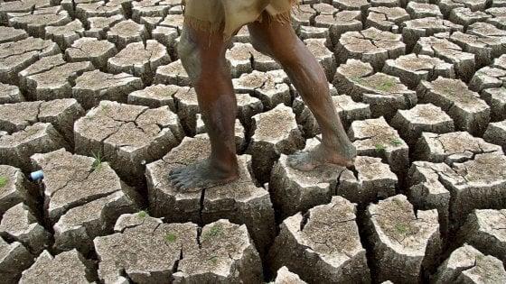 Ondate di calore: entro il 2100 riguarderanno il 74% della popolazione mondiale
