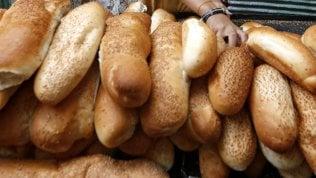 """""""Pane integrale, non è dettoche sia più salutare""""di DEBORAH AMERI"""