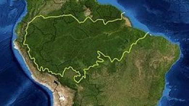 """La Norvegia al Brasile: """"Fermate la deforestazione o non vi diamo più soldi"""""""