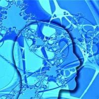 Il cervello lavora anche per dimenticare: ci aiuta a prendere decisioni