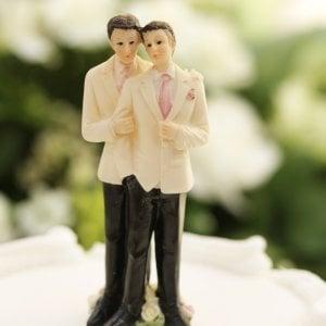 """Alla Corte Suprema anche la """"torta arcobaleno"""" contestata"""