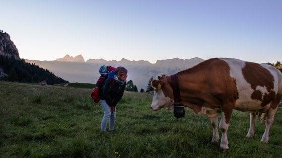 Svegliarsi tra la natura incontaminata della Val di Fassa