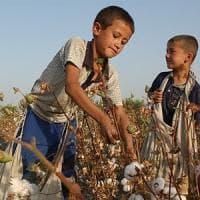 Uzbekistan, La Banca mondiale finanzia progetti agricoli legati al lavoro