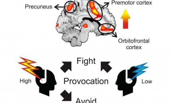 """Il nostro cervello di fronte a una minaccia: come funziona lo spiega """"Il Signore degli anelli"""""""
