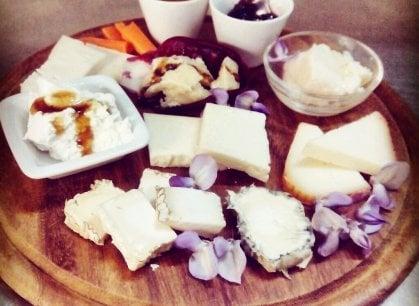 Bologna: all'Osteria Eco di Vento cucina vegetariana e vegana tra luci e ombre