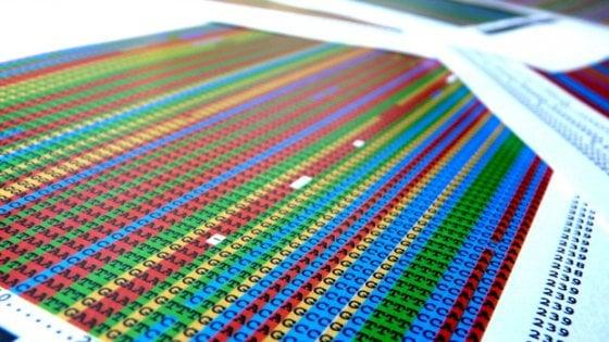 Tumore del testicolo: identificati 19 nuovi geni associati al rischio di ammalarsi