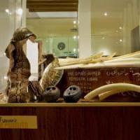 A Roma apre il Museo Ambiente e Crimine