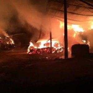 Anno record di incendi e richieste di aiuto: mai cosi tante dal 2007