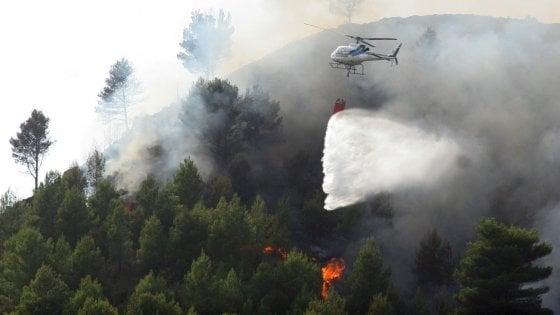 Identikit di chi dà fuoco e scappa incendiando l'Italia